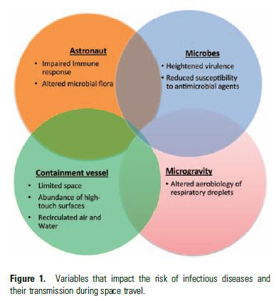 Faktoren für Infektionsrisiken an Bord